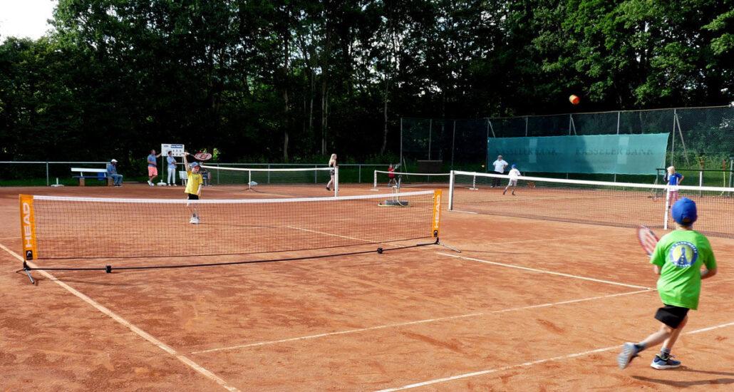 tennisclub tennisverein tennisplatz kassel