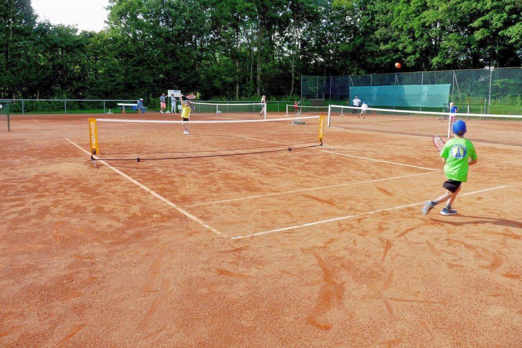 tennisclub blau-weiss kassel ev